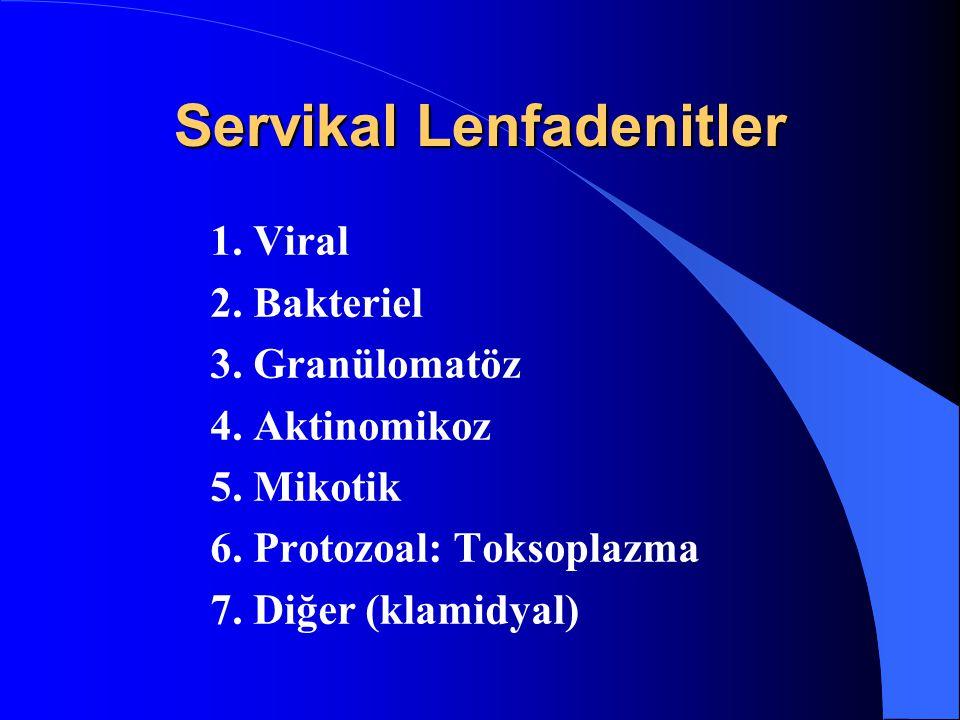 Servikal Lenfadenitler