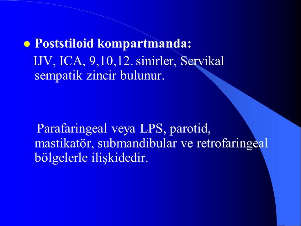 Poststiloid kompartmanda: