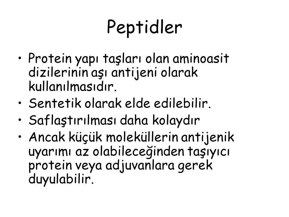 Peptidler Protein yapı taşları olan aminoasit dizilerinin aşı antijeni olarak kullanılmasıdır. Sentetik olarak elde edilebilir.
