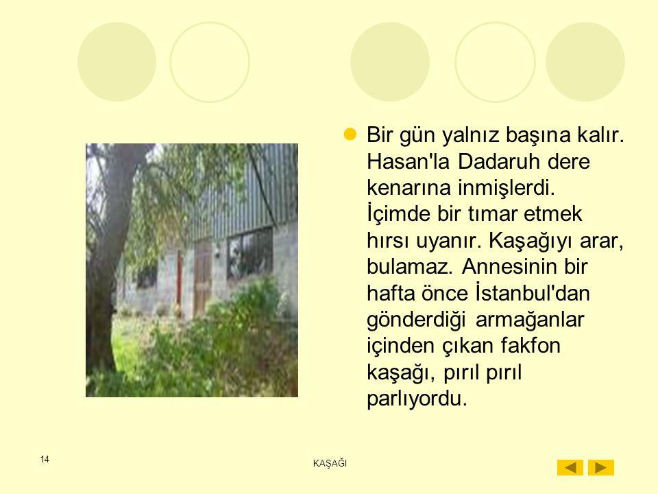 Bir gün yalnız başına kalır. Hasan la Dadaruh dere kenarına inmişlerdi