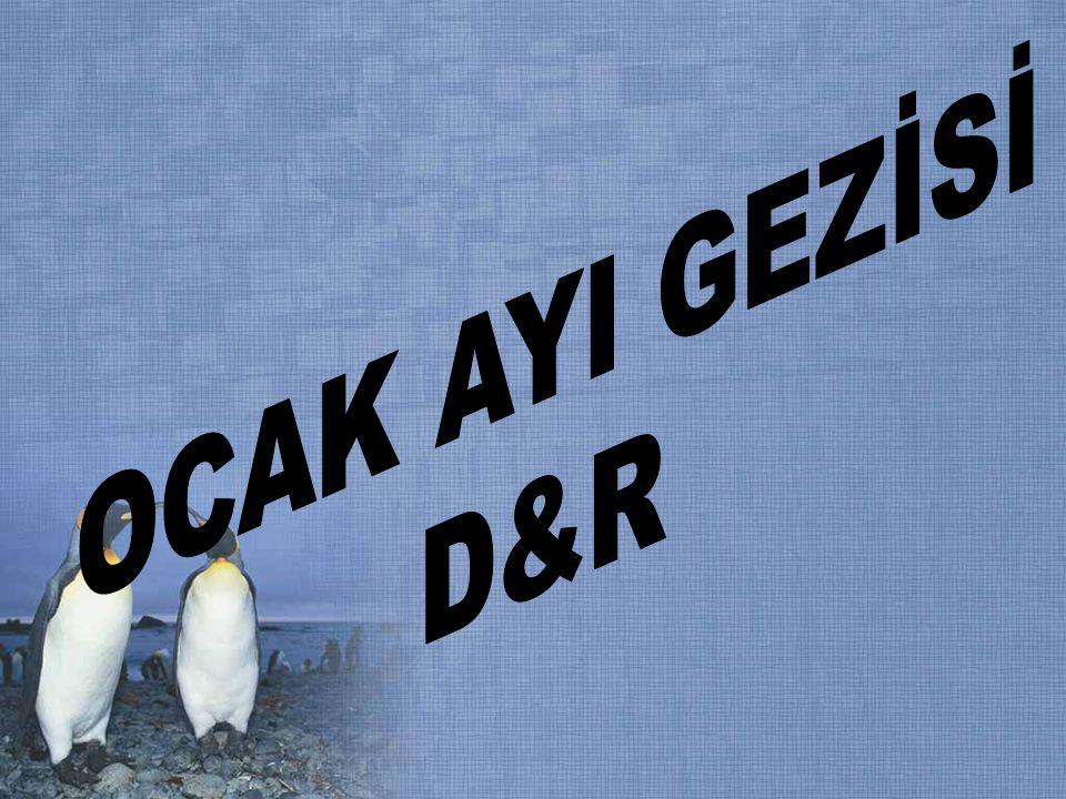 OCAK AYI GEZİSİ D&R