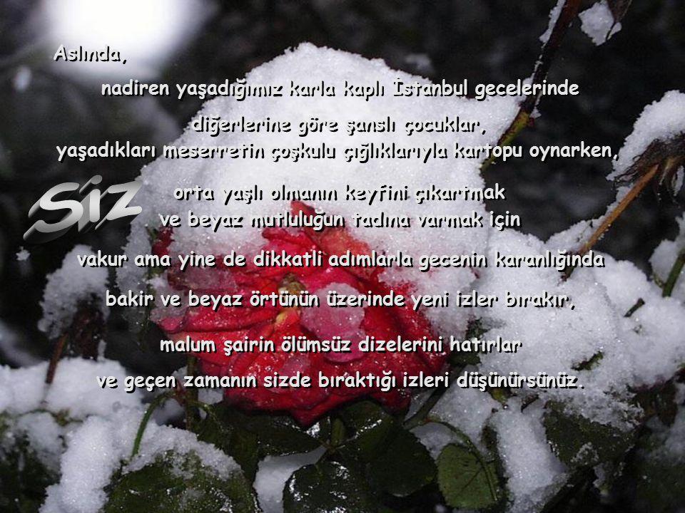 Siz Aslında, nadiren yaşadığımız karla kaplı İstanbul gecelerinde