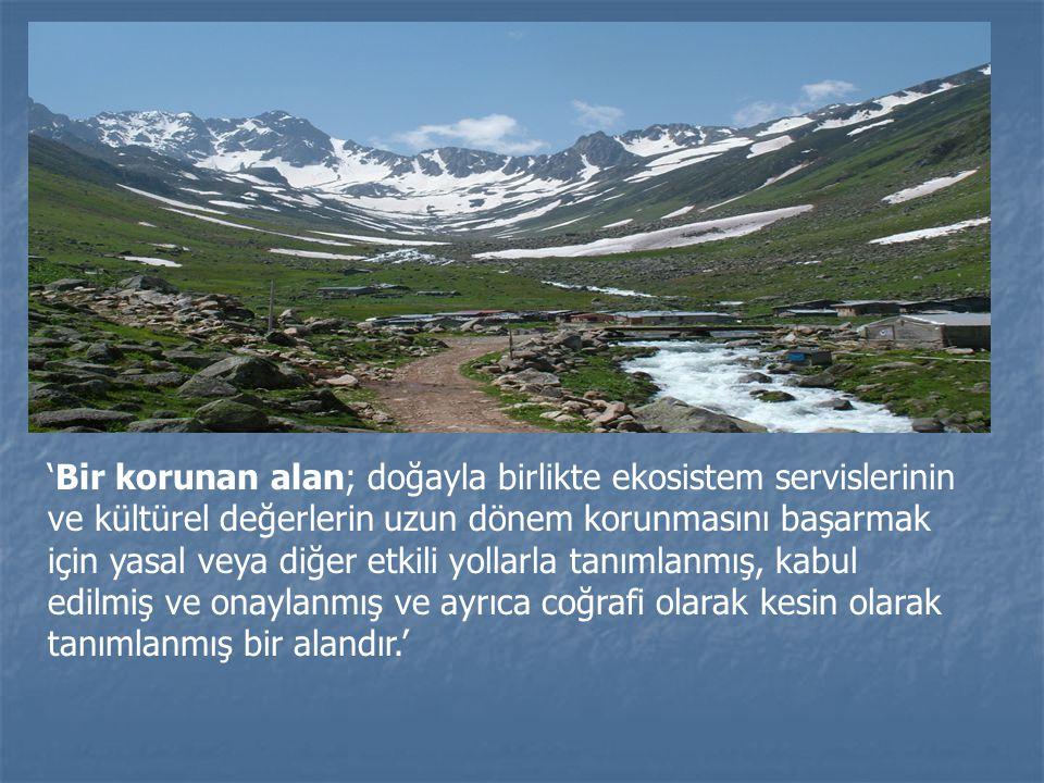 'Bir korunan alan; doğayla birlikte ekosistem servislerinin ve kültürel değerlerin uzun dönem korunmasını başarmak için yasal veya diğer etkili yollarla tanımlanmış, kabul edilmiş ve onaylanmış ve ayrıca coğrafi olarak kesin olarak tanımlanmış bir alandır.'