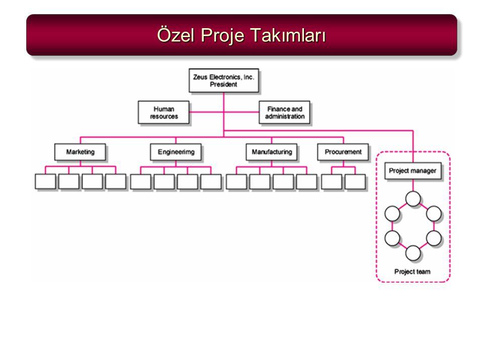 Özel Proje Takımları