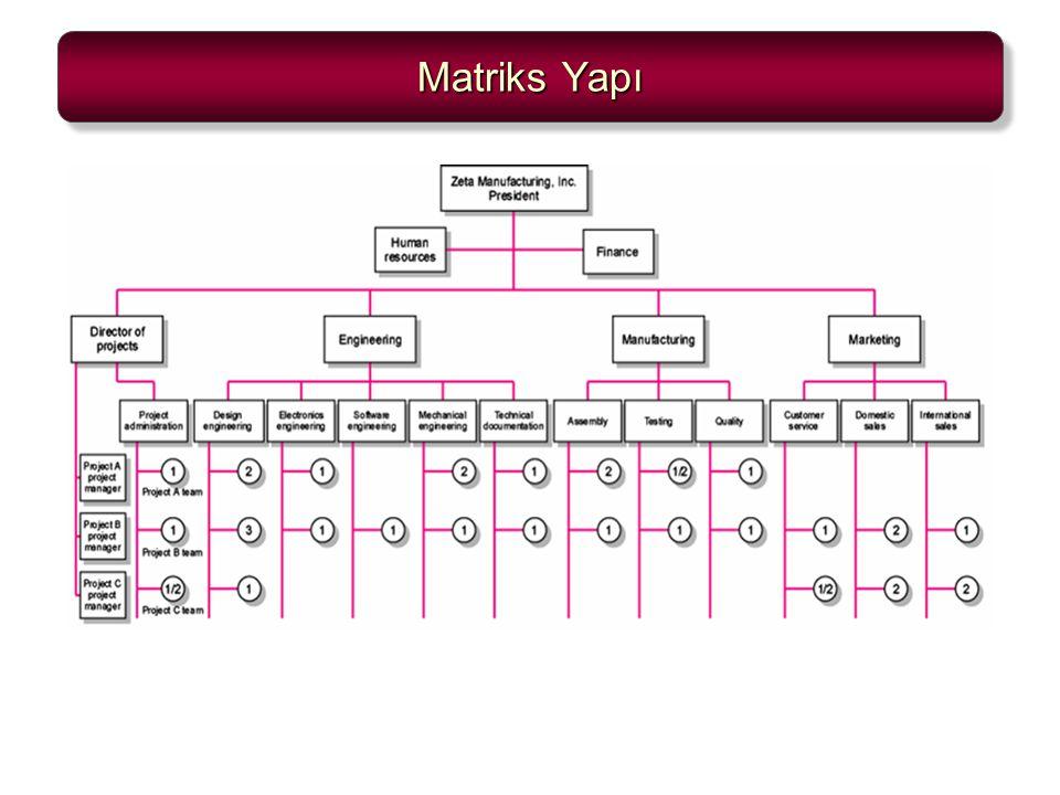Matriks Yapı