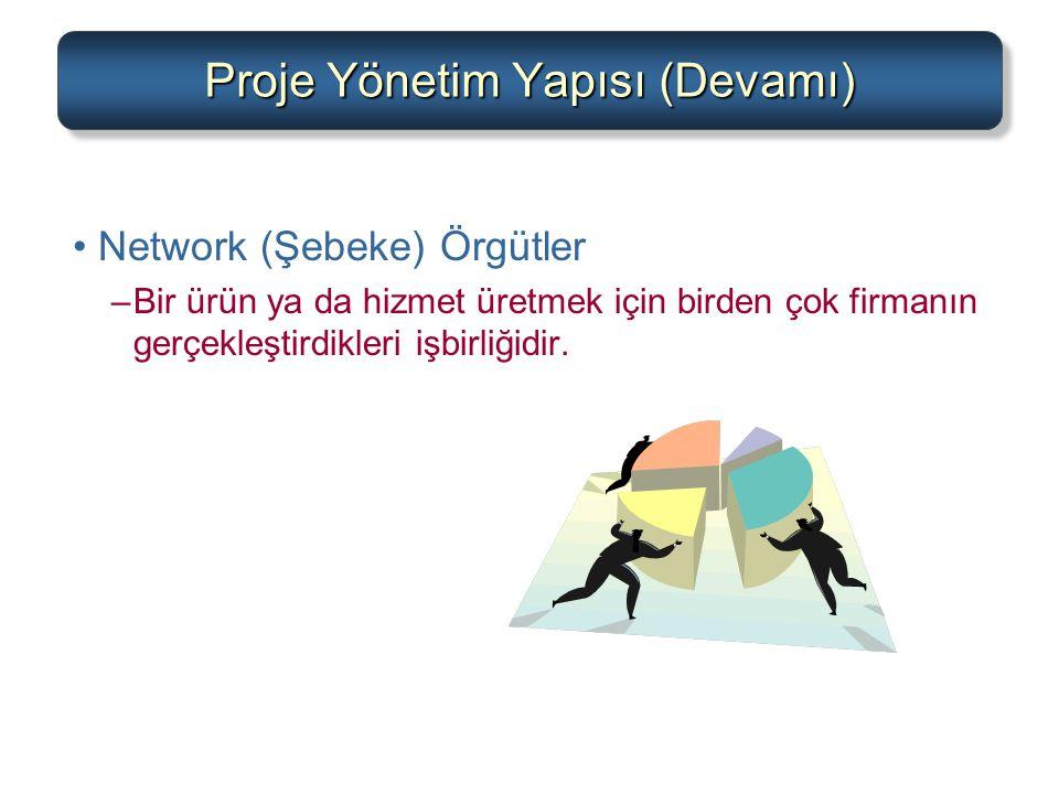 Proje Yönetim Yapısı (Devamı)