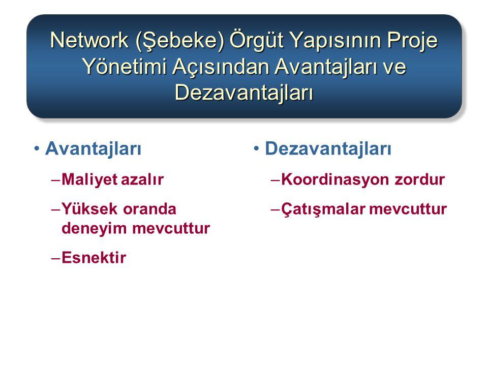 Network (Şebeke) Örgüt Yapısının Proje Yönetimi Açısından Avantajları ve Dezavantajları