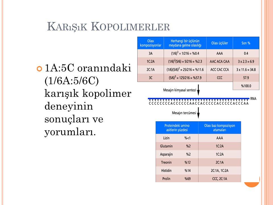 Karışık Kopolimerler 1A:5C oranındaki (1/6A:5/6C) karışık kopolimer deneyinin sonuçları ve yorumları.