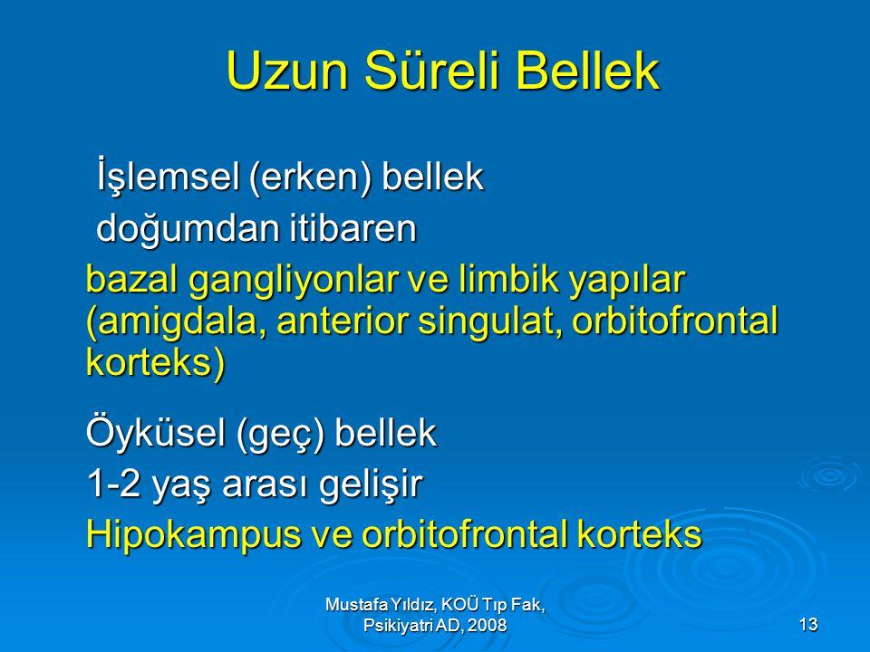 Mustafa Yıldız, KOÜ Tıp Fak, Psikiyatri AD, 2008