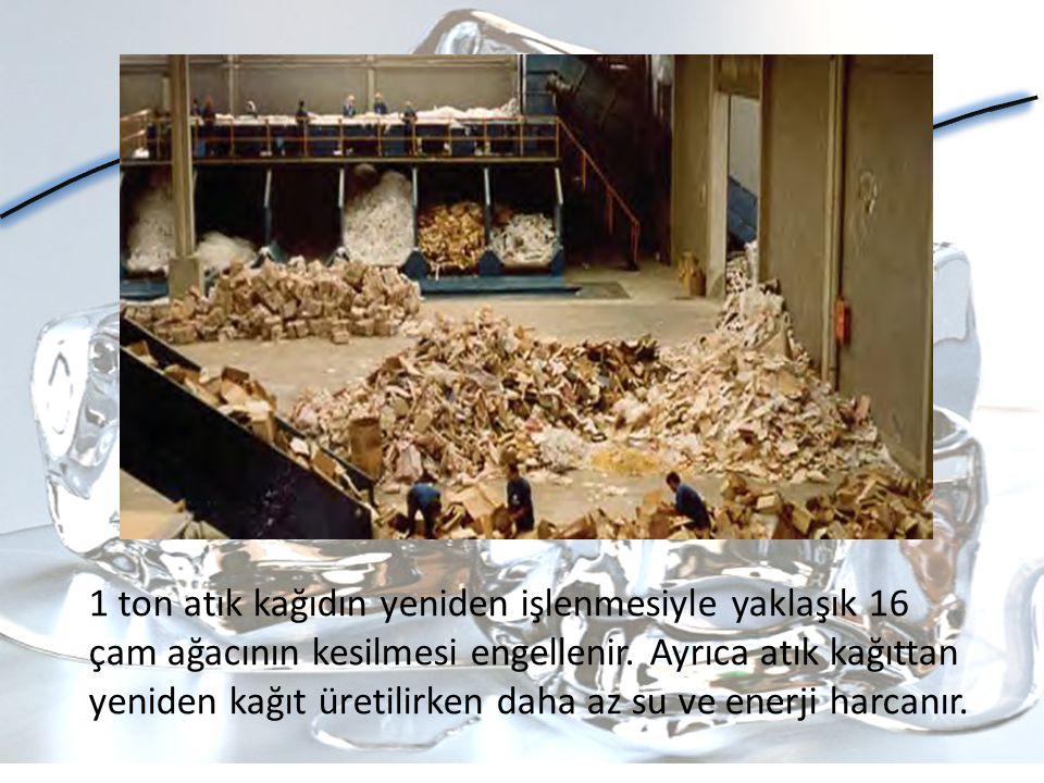 1 ton atık kağıdın yeniden işlenmesiyle yaklaşık 16 çam ağacının kesilmesi engellenir.