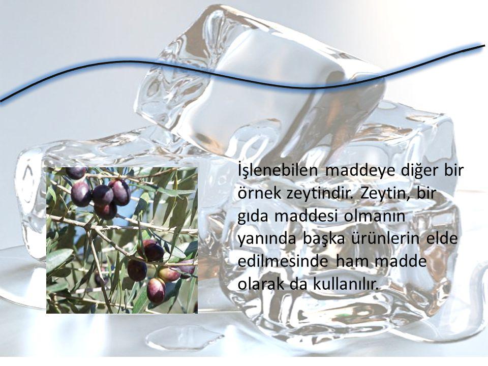 İşlenebilen maddeye diğer bir örnek zeytindir