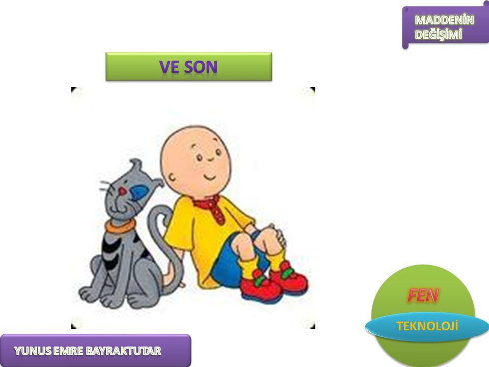 VE SON