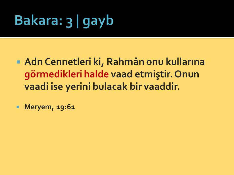 Bakara: 3 | gayb Adn Cennetleri ki, Rahmân onu kullarına görmedikleri halde vaad etmiştir. Onun vaadi ise yerini bulacak bir vaaddir.