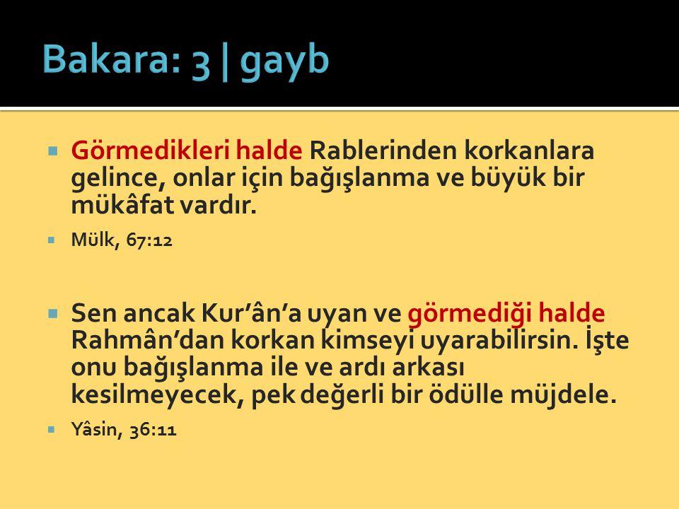 Bakara: 3 | gayb Görmedikleri halde Rablerinden korkanlara gelince, onlar için bağışlanma ve büyük bir mükâfat vardır.