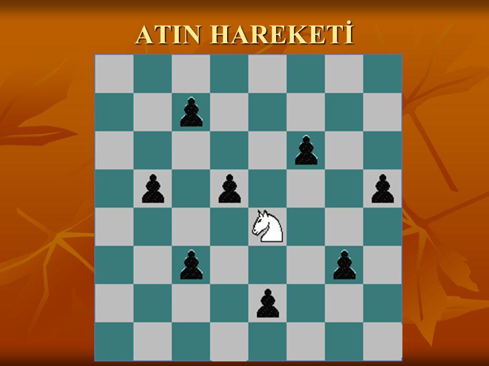 ATIN HAREKETİ