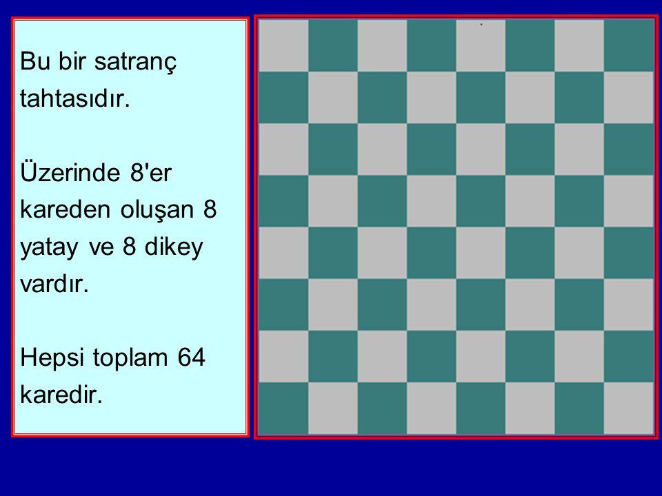 Bu bir satranç tahtasıdır