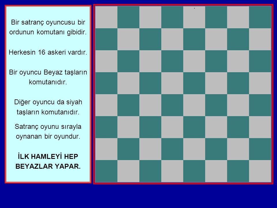 Bir satranç oyuncusu bir ordunun komutanı gibidir
