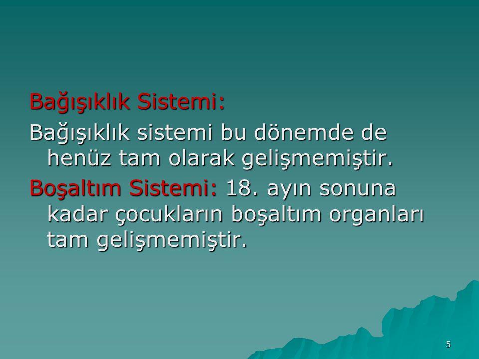 Bağışıklık Sistemi: Bağışıklık sistemi bu dönemde de henüz tam olarak gelişmemiştir.