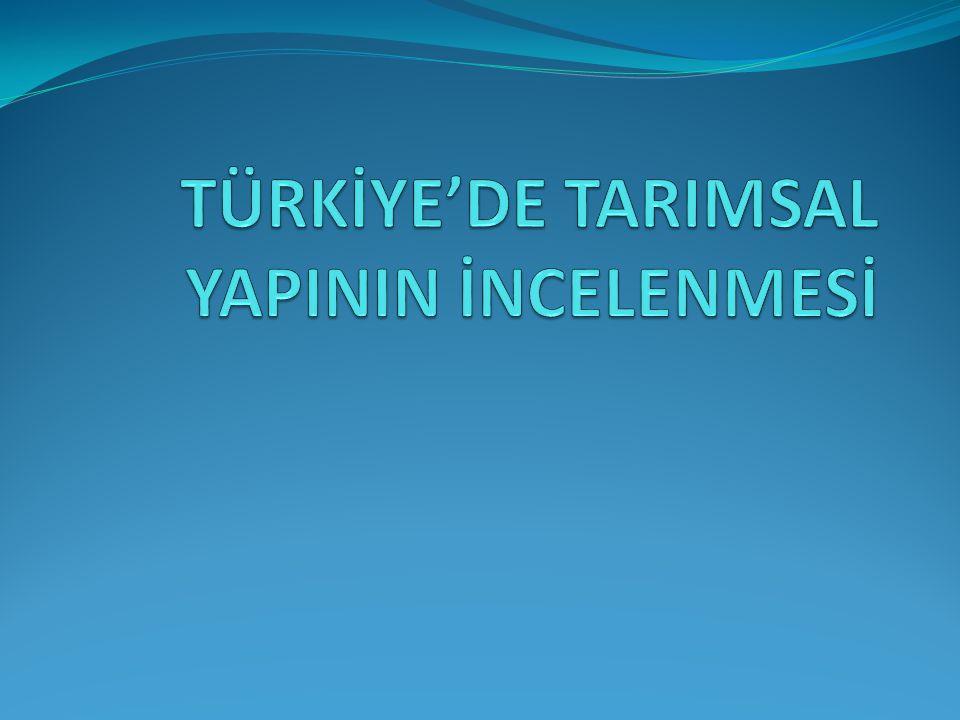 TÜRKİYE'DE TARIMSAL YAPININ İNCELENMESİ