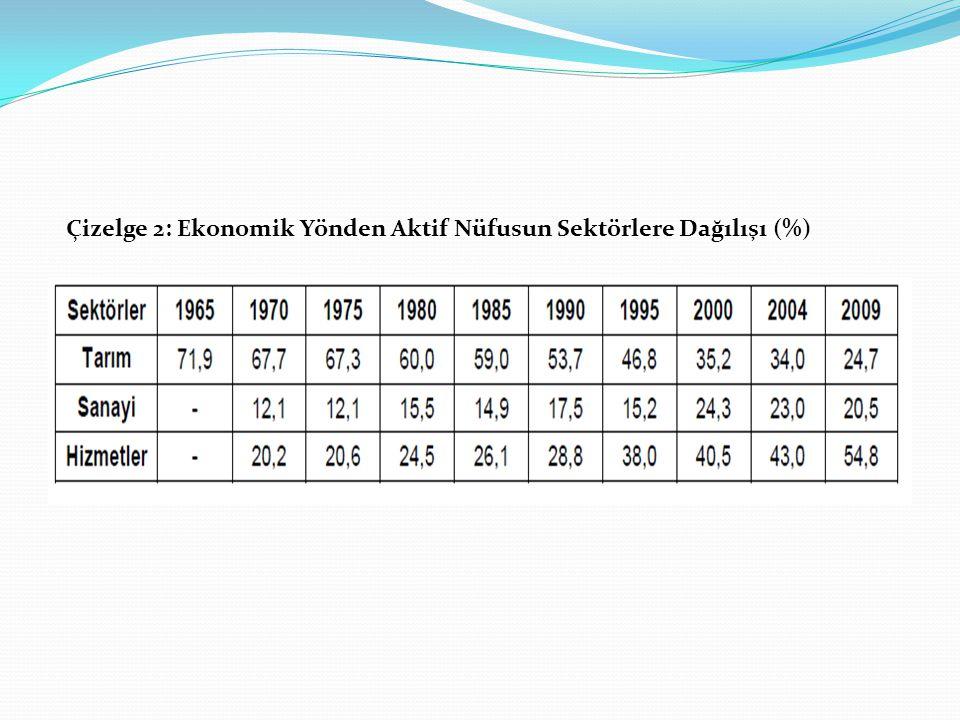 Çizelge 2: Ekonomik Yönden Aktif Nüfusun Sektörlere Dağılışı (%)