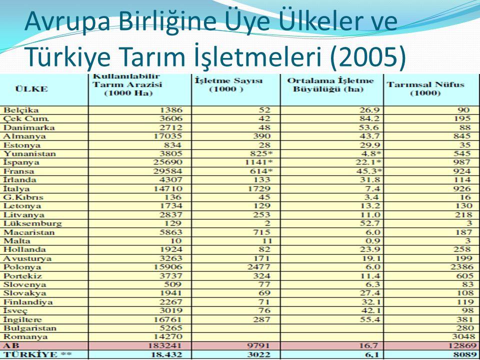 Avrupa Birliğine Üye Ülkeler ve Türkiye Tarım İşletmeleri (2005)