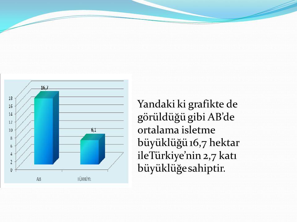 Yandaki ki grafikte de görüldüğü gibi AB'de ortalama isletme büyüklüğü 16,7 hektar ileTürkiye'nin 2,7 katı büyüklüğe sahiptir.