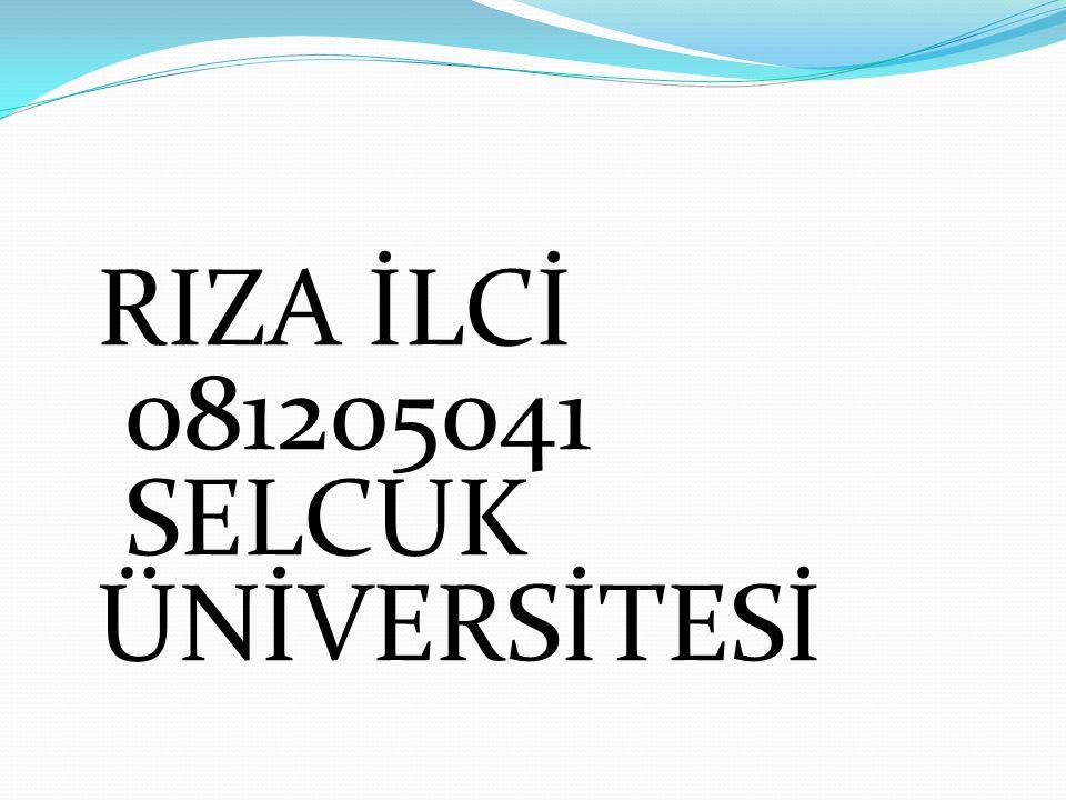 RIZA İLCİ 081205041 SELCUK ÜNİVERSİTESİ