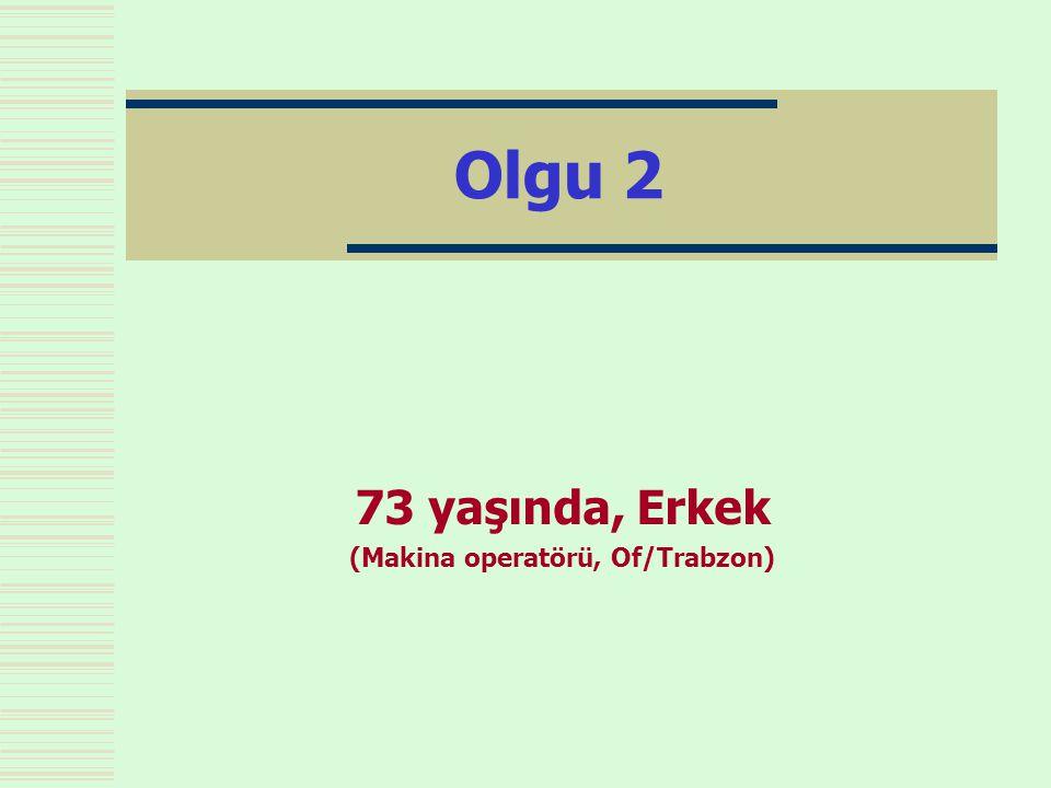 73 yaşında, Erkek (Makina operatörü, Of/Trabzon)