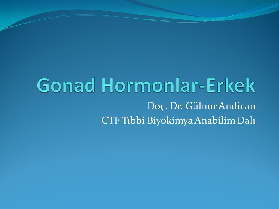 Gonad Hormonlar-Erkek