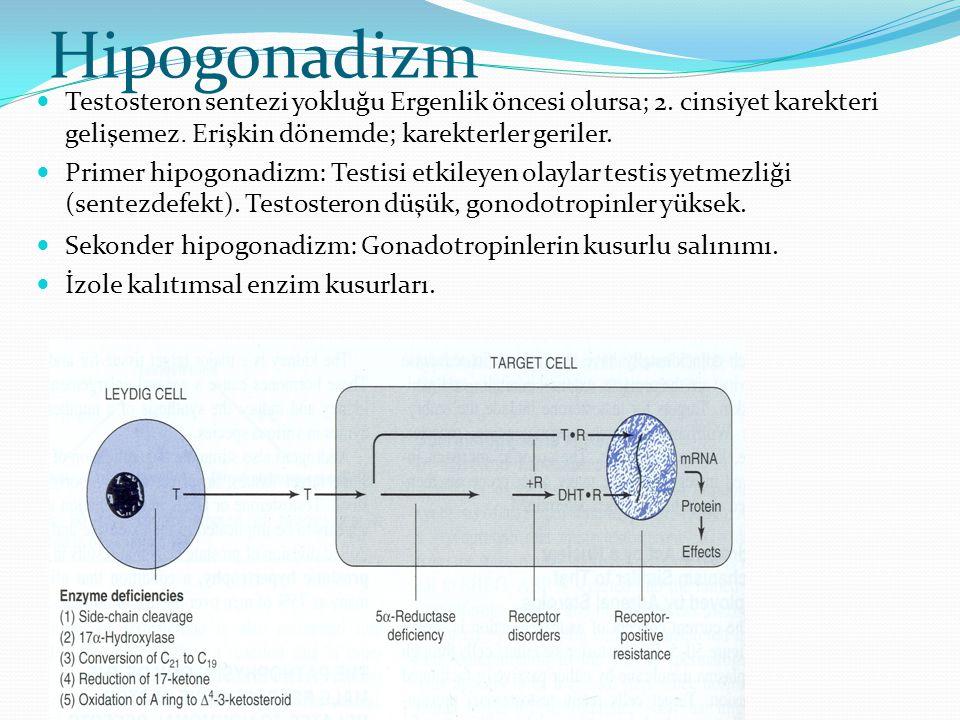 Hipogonadizm Testosteron sentezi yokluğu Ergenlik öncesi olursa; 2. cinsiyet karekteri gelişemez. Erişkin dönemde; karekterler geriler.