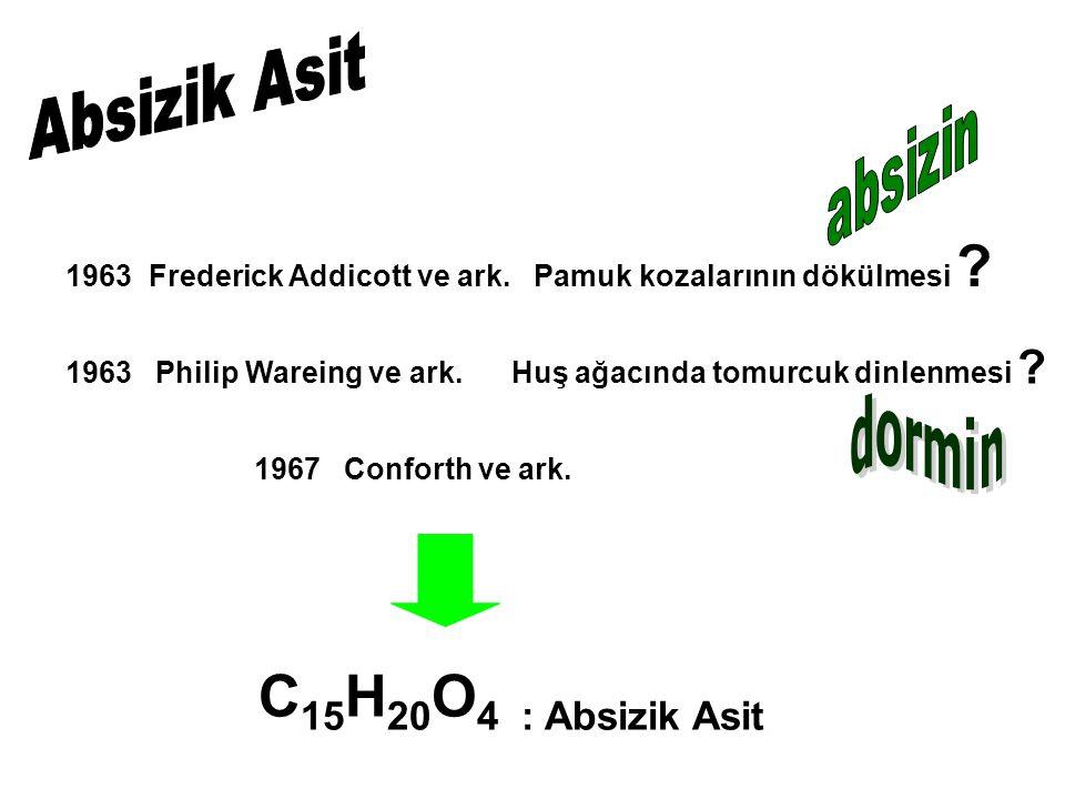 C15H20O4 : Absizik Asit Absizik Asit