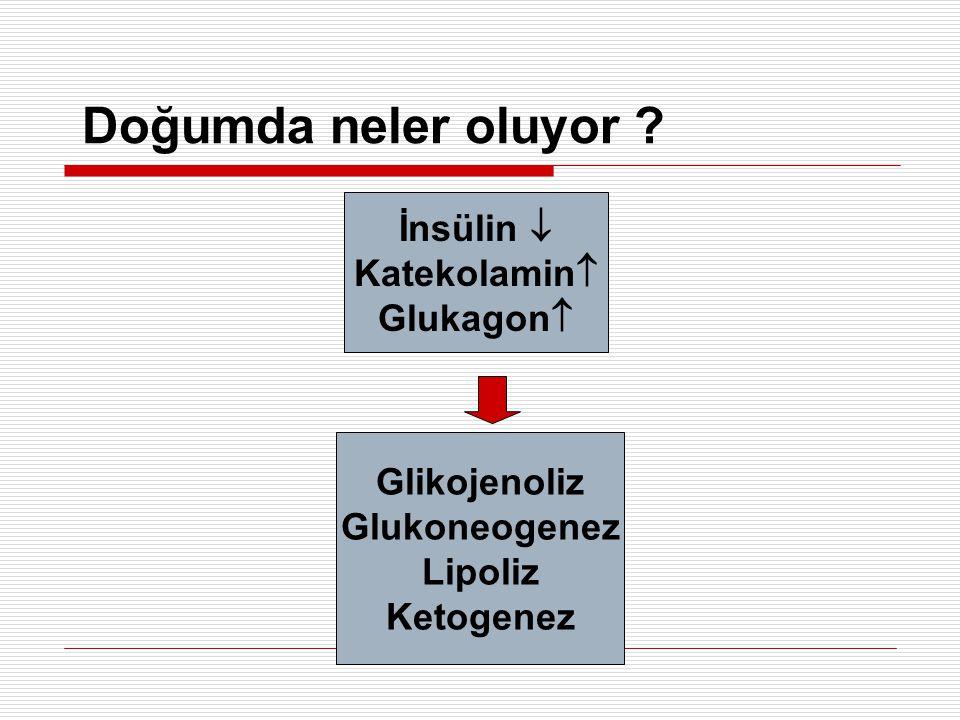 Doğumda neler oluyor İnsülin  Katekolamin Glukagon Glikojenoliz