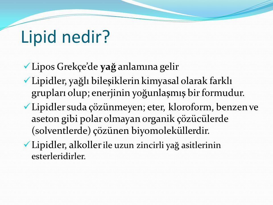 Lipid nedir Lipos Grekçe'de yağ anlamına gelir