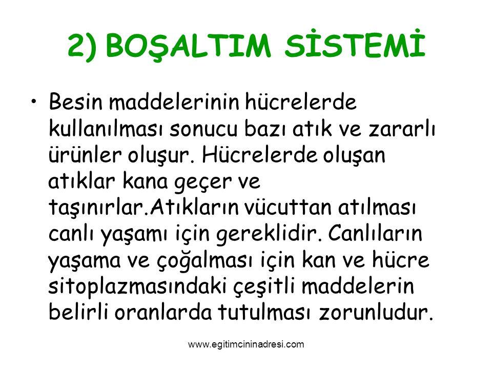 2) BOŞALTIM SİSTEMİ
