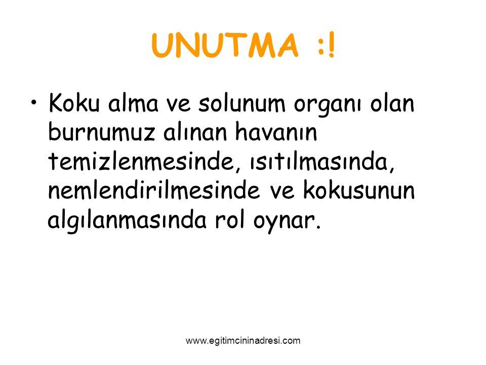UNUTMA :!