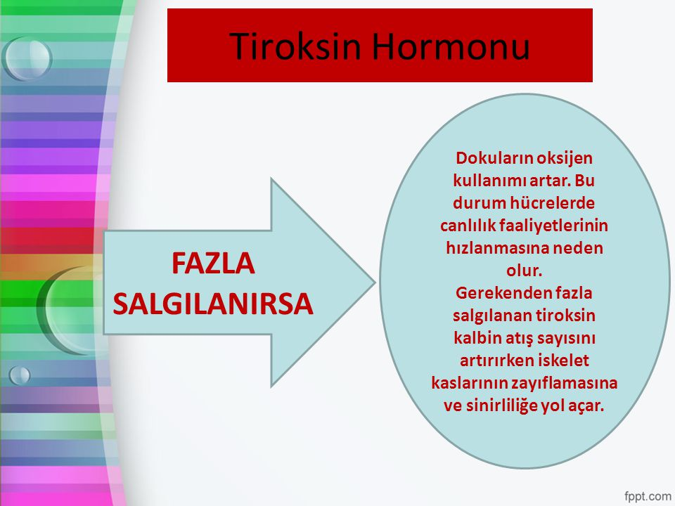 Tiroksin Hormonu FAZLA SALGILANIRSA