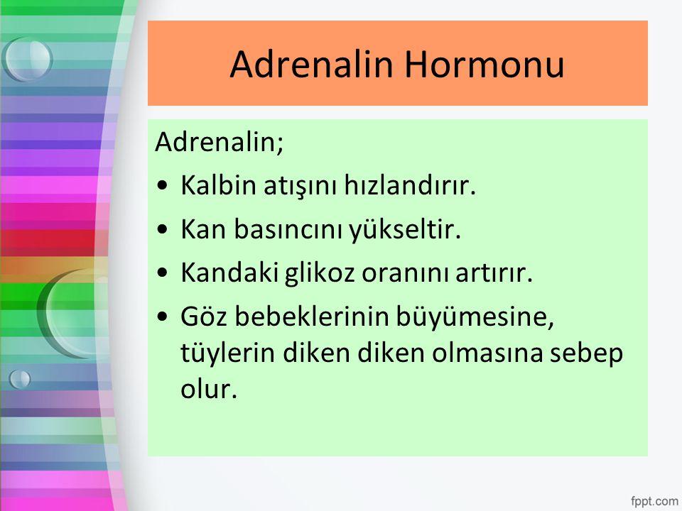 Adrenalin Hormonu Adrenalin; Kalbin atışını hızlandırır.