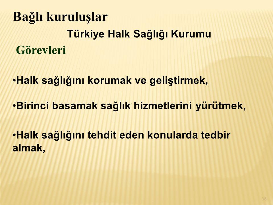 Türkiye Halk Sağlığı Kurumu Görevleri
