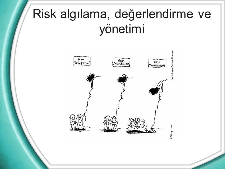 Risk algılama, değerlendirme ve yönetimi