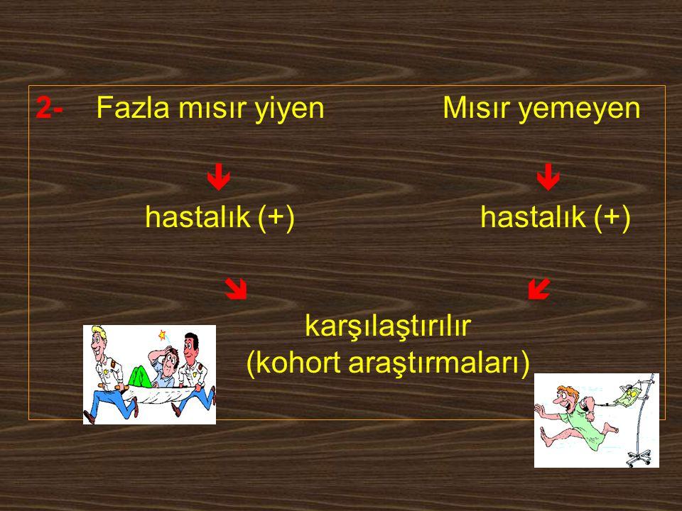 2- Fazla mısır yiyen Mısır yemeyen