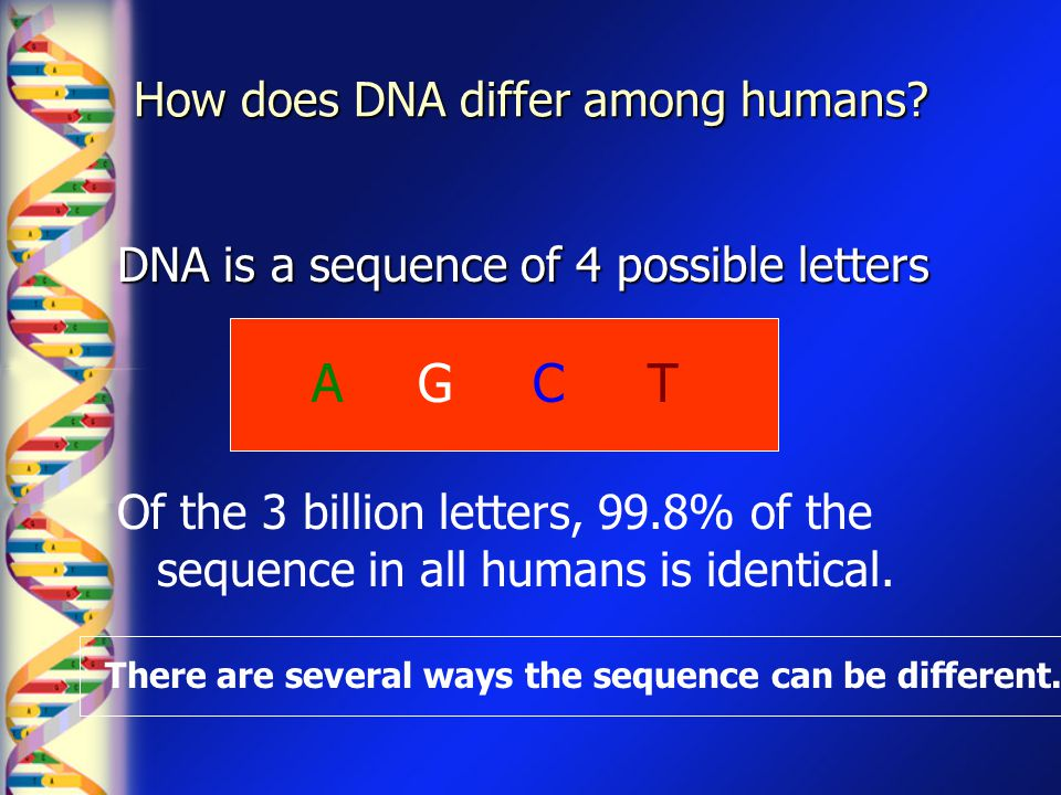 How does DNA differ among humans
