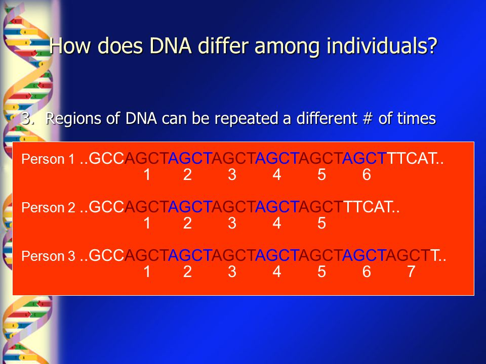 How does DNA differ among individuals