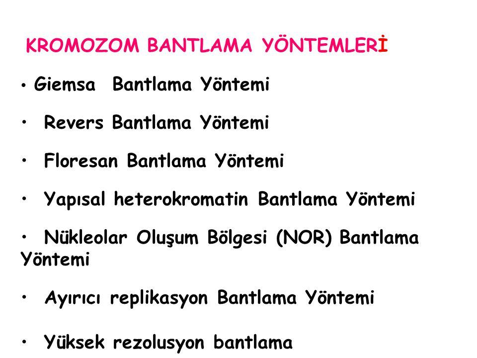 KROMOZOM BANTLAMA YÖNTEMLERİ
