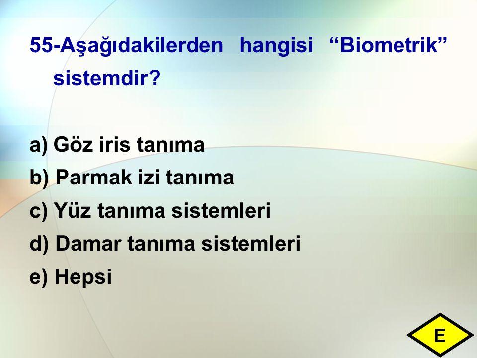 55-Aşağıdakilerden hangisi Biometrik sistemdir