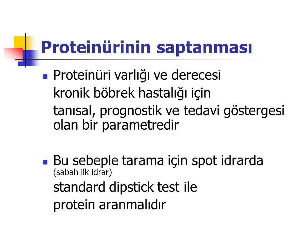 Proteinürinin saptanması