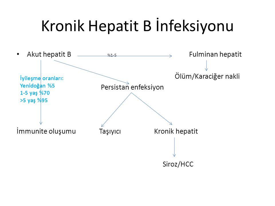 Kronik Hepatit B İnfeksiyonu