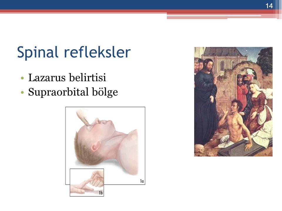 Spinal refleksler Lazarus belirtisi Supraorbital bölge