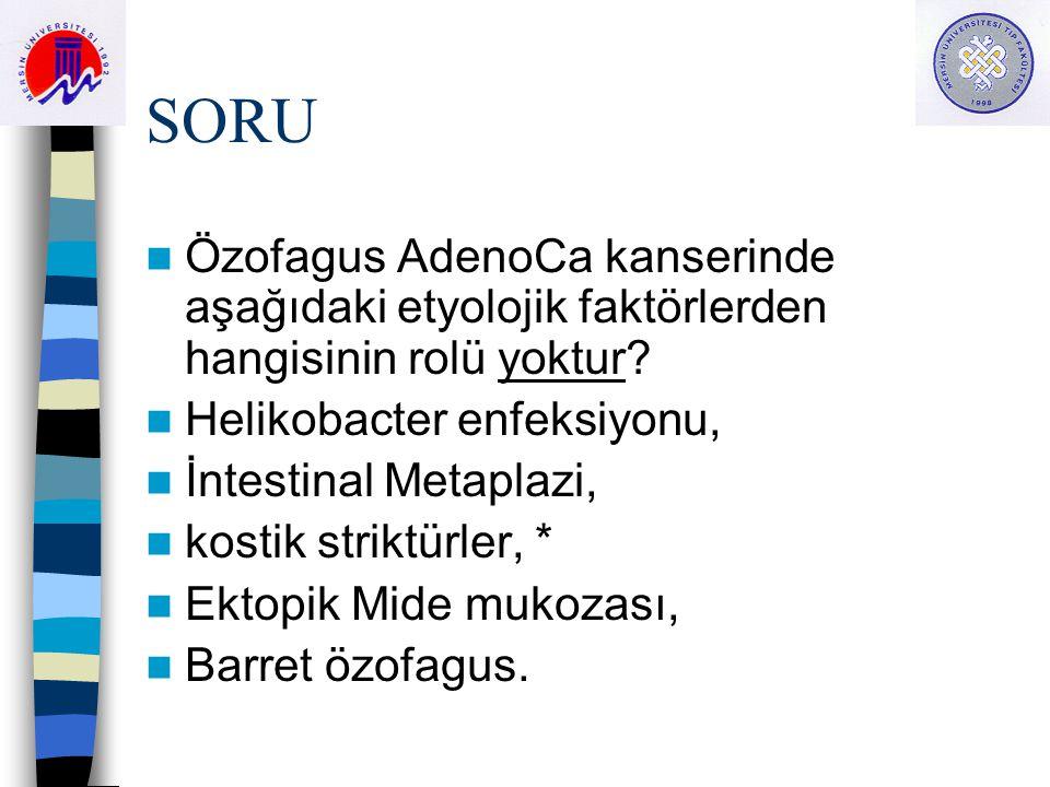 SORU Özofagus AdenoCa kanserinde aşağıdaki etyolojik faktörlerden hangisinin rolü yoktur Helikobacter enfeksiyonu,