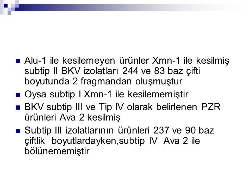 Alu-1 ile kesilemeyen ürünler Xmn-1 ile kesilmiş subtip II BKV izolatları 244 ve 83 baz çifti boyutunda 2 fragmandan oluşmuştur