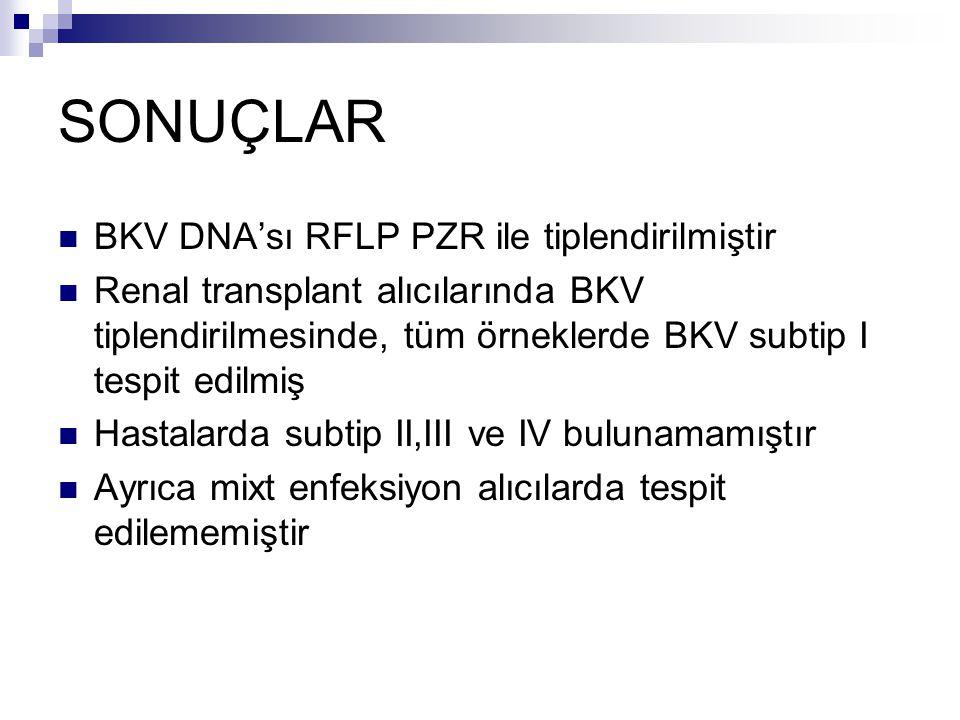 SONUÇLAR BKV DNA'sı RFLP PZR ile tiplendirilmiştir